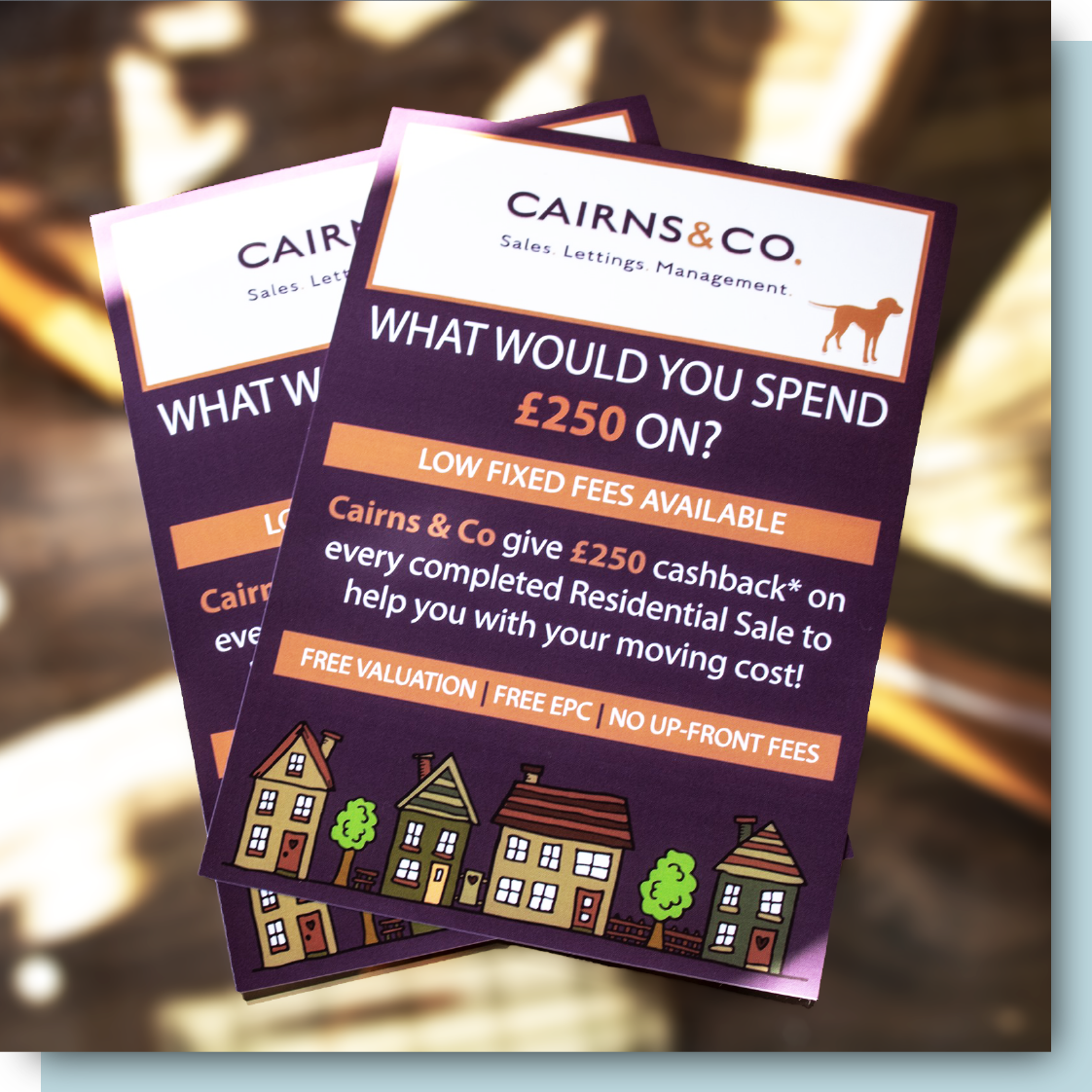 Cairns & Co Print Design